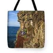 Rocky Cinque Terre Tote Bag