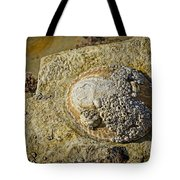 Rocky Cliff Tote Bag