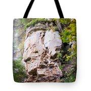 Rocky Cliff Wildcat Den Muscatine Ia 1 Tote Bag