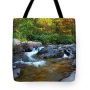 Rocky Creek Above Rocky Falls 1 Tote Bag