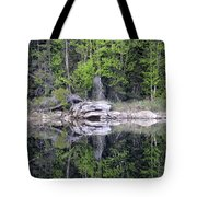Rocky Faces Tote Bag