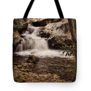 Rocky Fork Falls Tote Bag