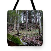 Rocky Hill Tote Bag