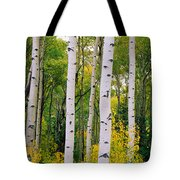 Rocky Mountain Aspen Forest Tote Bag
