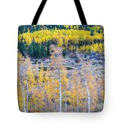 Rocky Mountain Autumn Contrast Tote Bag by James BO  Insogna