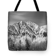 Rocky Mountain Autumn High In Black And White Tote Bag
