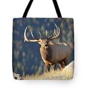 Rocky Mountain Bull Elk Bugling Tote Bag