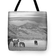 Rocky Mountain Country Morning Bw Tote Bag