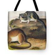 Rocky Mountain Neotoma Tote Bag