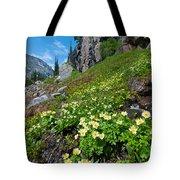 Rocky Mountain Summer Landscape Tote Bag