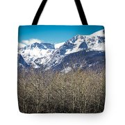 Rocky Mountain Woodland Tote Bag