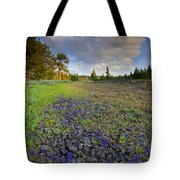 Rocky Prairie Cloud Explosion Tote Bag