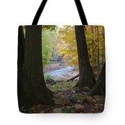Rocky River Autumn 4 Tote Bag