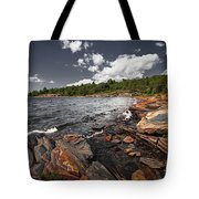 Rocky Shore Of Georgian Bay I Tote Bag by Elena Elisseeva