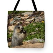 Rodent In The Rockies Tote Bag