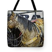 Rodeo Horse Two Tote Bag