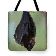 Rodrigues Flying Fox Tote Bag