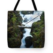 Rogue River Falls 1 Tote Bag