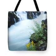 Rogue River Falls 5 Tote Bag