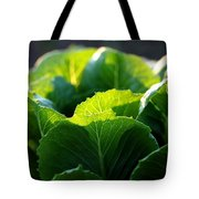 Romaine Study Tote Bag by Angela Rath