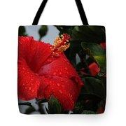 Romance In The Rain Tote Bag