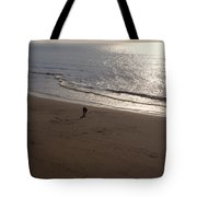 romantic sunset in Holland Tote Bag