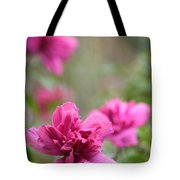 Romantically Pink Tote Bag