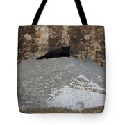 Rome Cat Tote Bag