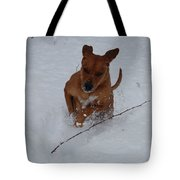 Romp In The Snow Tote Bag