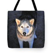 Romy Guardian Of The Grapes Tote Bag