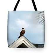 Roof Ornament Tote Bag
