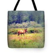 Roosevelt Bull Elk Tote Bag