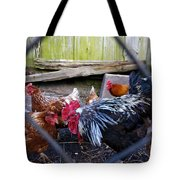 Rooster And Chickens Tote Bag