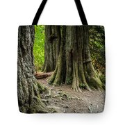 Root Feet Collection 1 Tote Bag
