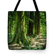 Root Feet Collection 3 Tote Bag