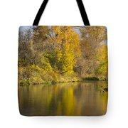 Root River Autumn 1 Tote Bag