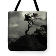Rooted In Stone Tote Bag