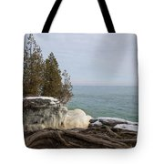 Rooted In Winter Tote Bag