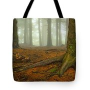 Rooted-pano Tote Bag