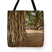 Roots - Banyan Tree Park In Maui Tote Bag