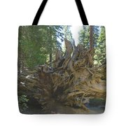 Roots Tote Bag by Barbara Snyder