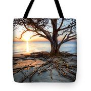 Roots Beach Tote Bag