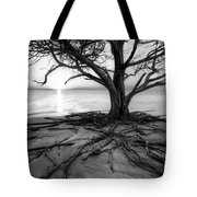 Roots Beach In Black And White Tote Bag