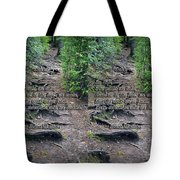 Roots - Cross Your Eyes And Focus On The Middle Image That Appears Tote Bag