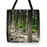 Roots Of Trees Tote Bag
