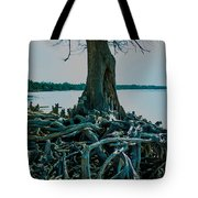 Roots On The Bay Tote Bag