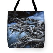 Roots Over Ozark Stream Tote Bag