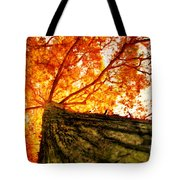 Roots To Branches IIi Tote Bag