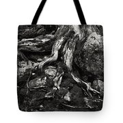 Roots Will Find A Way Tote Bag