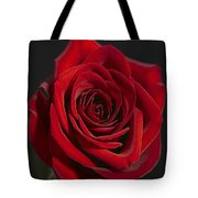 Rose 11 Tote Bag